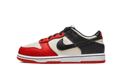 Nike Dunk Low EMB NBA 75th Anniversary Chicago (PS)